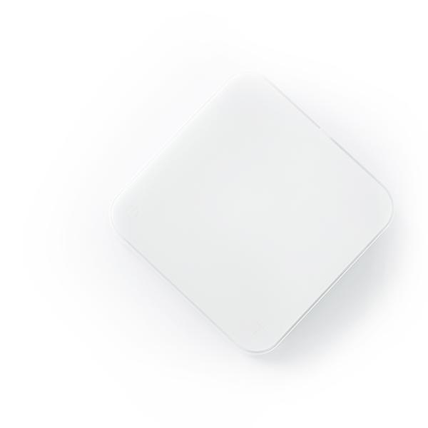 acaia-pearl-s-white-scale